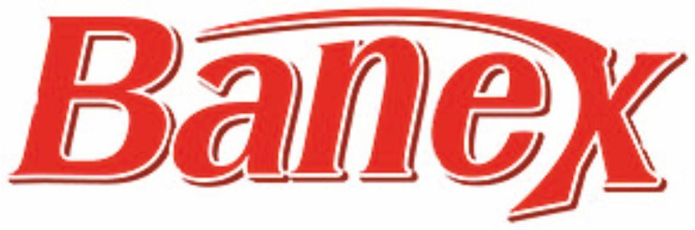 Banex logo